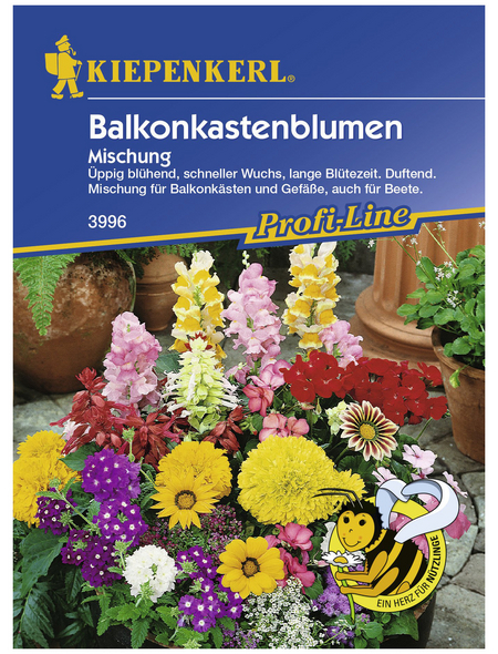 KIEPENKERL Blumenmischung, Samen, Blüte: mehrfarbig