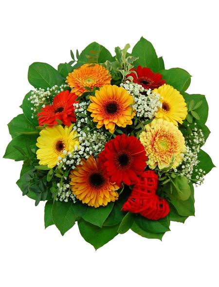 Blumenstrauß »Gerbera«, Ø 32–35 cm
