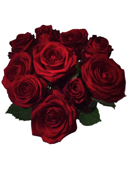 Blumenstrauß »Rose«, Ø 23 cm