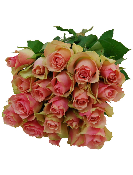 Blumenstrauß »Rose «, Ø 28 cm