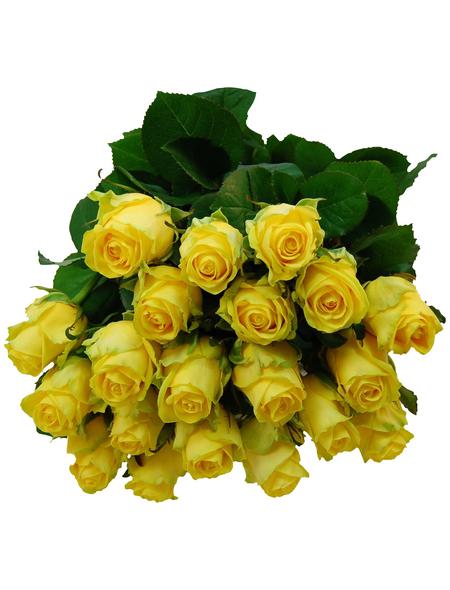Blumenstrauß »Rose«, Ø 33 cm
