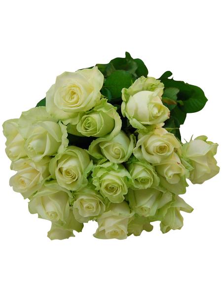 Blumenstrauß »Rose«, Ø 35 cm