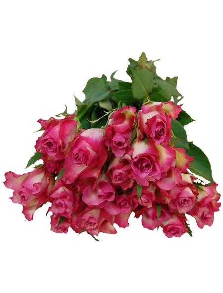 Blumenstrauß »Rose «, Ø 35 cm