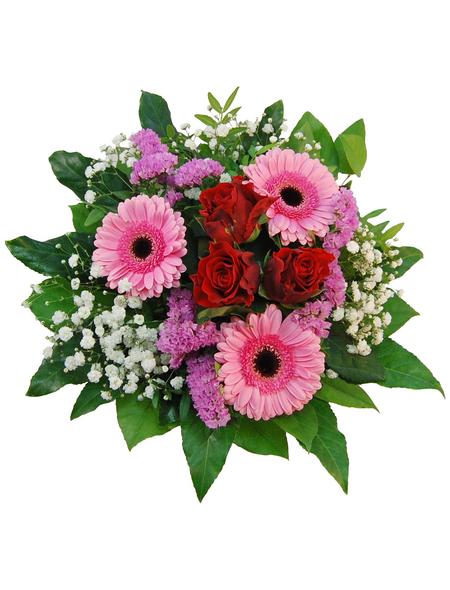 Blumenstrauß »Rosen, Germini«, Ø 28–32 cm