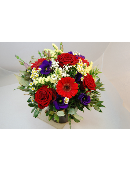 Blumenstrauß »Rosen, Germini«, Ø 31–35 cm