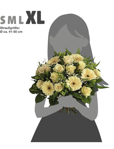 Blumenstrauß »Rosen, Germini«, Ø 38–42 cm