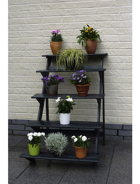 PROMADINO Blumentreppe, BxH: 78 x 109 cm, Kiefernholz, anthrazit