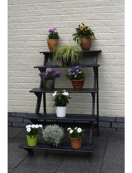PROMADINO Blumentreppe,  Höhe: 109 cm, anthrazit