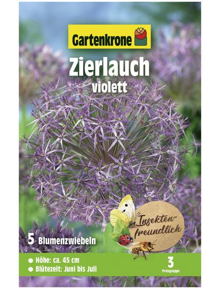 GARTENKRONE Blumenzwiebel »Gartenkrone Allium Christophii«