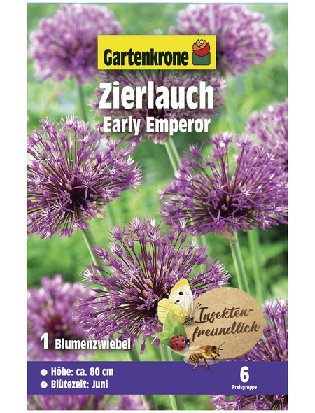 GARTENKRONE Blumenzwiebel »Gartenkrone Allium Early Emperor«