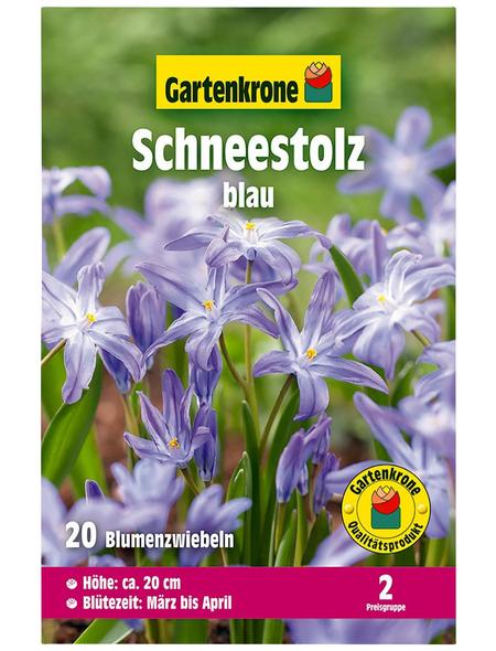GARTENKRONE Blumenzwiebel »Gartenkrone Chionodoxa Luciliae«