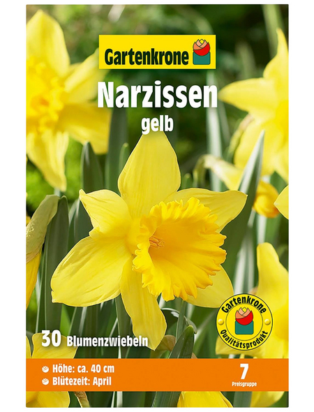 GARTENKRONE Blumenzwiebel »Gartenkrone Narzisse«