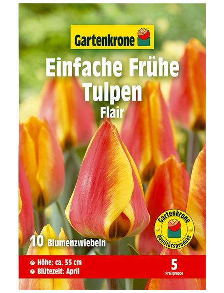 GARTENKRONE Blumenzwiebel »Gartenkrone Tulpe Flairrot«