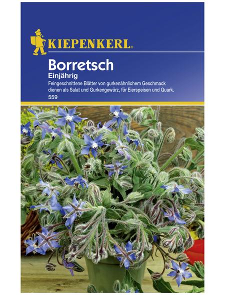 KIEPENKERL Boretsch officinalis Borago