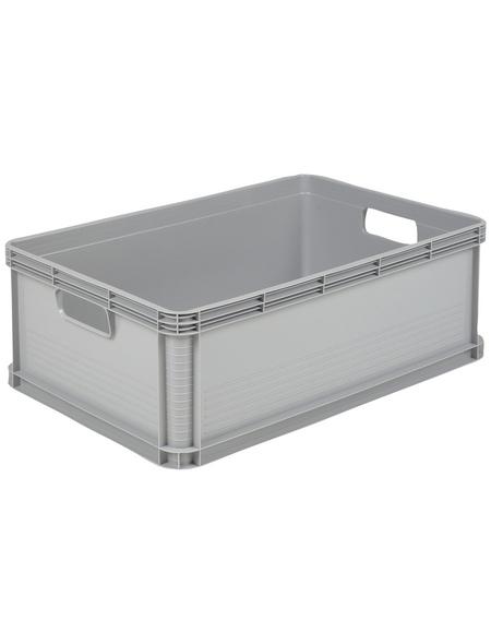 KEEEPER Box »Robert«, BxHxL: 40 x 22 x 60 cm, Kunststoff