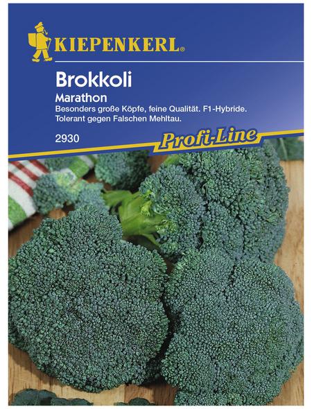 KIEPENKERL Brokkoli oleracea var. Italica Brassica