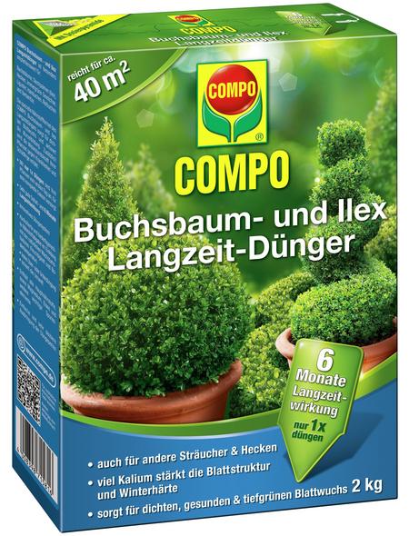 compo buchsbaum und ilex langzeit d nger 2 kg