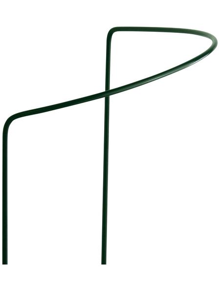 BELLISSA Busch- und Strauchstütze, BxHxT: 40 x 130 x 14 cm, Stahl