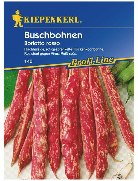KIEPENKERL Buschbohne vulgaris var. nanus Phaseolus »Borlotto Rosso«