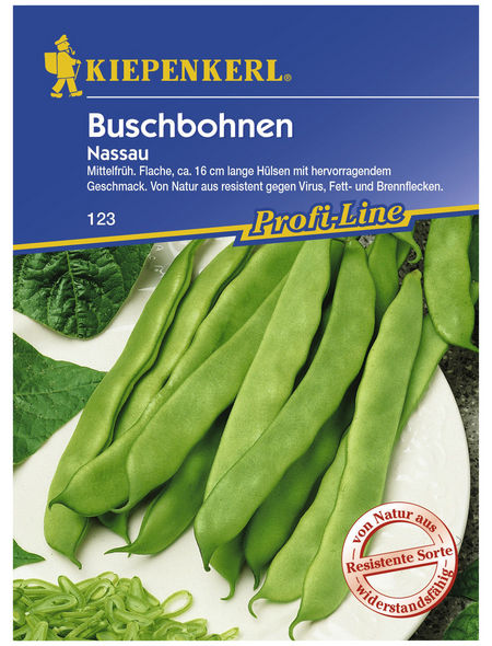 KIEPENKERL Buschbohne vulgaris var. nanus Phaseolus »Nassau«