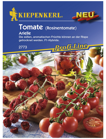 KIEPENKERL Cherry-Tomate lycopersicum Solanum »Arielle«