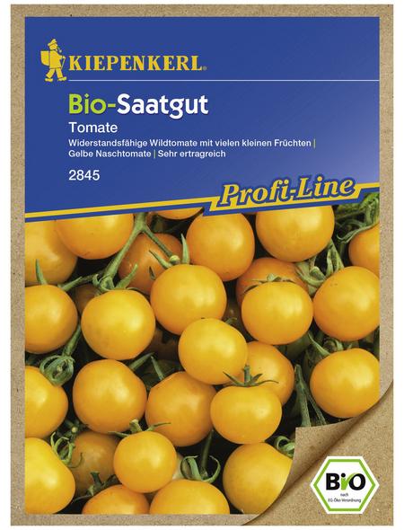 KIEPENKERL Cherry-Tomate lycopersicum Solanum »Golden Currant«