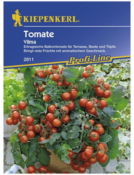 KIEPENKERL Cherry-Tomate lycopersicum Solanum »Vilma«