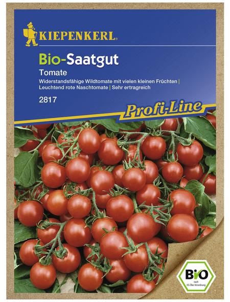 KIEPENKERL Cherry-Tomate pimpinellifolium Solanum »Rote Murmel«