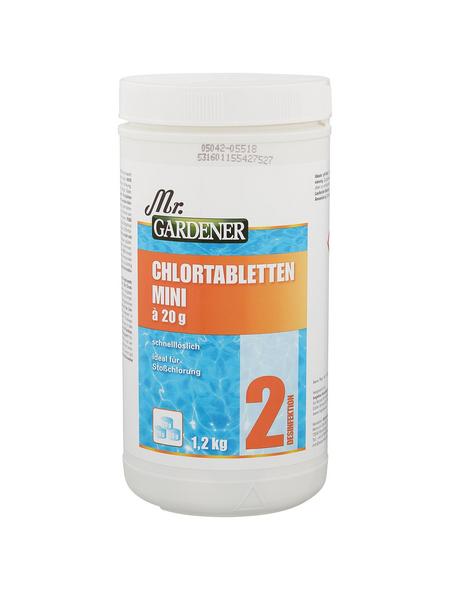 MR. GARDENER Chlortablette, 60 Stück