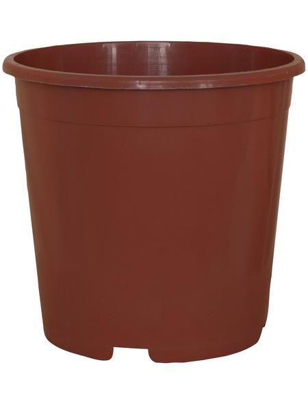 GELI Containertopf, Breite: 13 cm, terracotta, Kunststoff