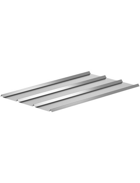 SAREI Dach- und Fassadenblech, BxL: 580 x 1180 mm, Aluminium