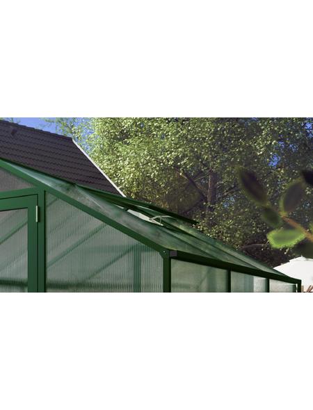 KGT Dachfenster »Tulpe«, BxHxt: 63 x 103 x 2 cm, Aluminium