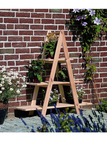 PROMADINO Dekoleiter, BxH: 101 x 112,5 cm, beige, Holz