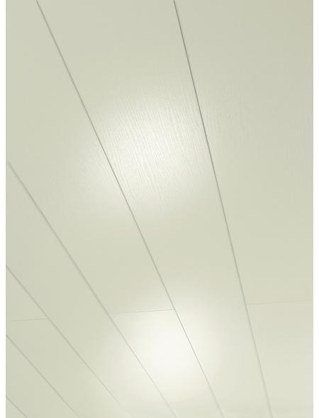 PARADOR Dekorpaneele »Rapido«, Esche, glänzend