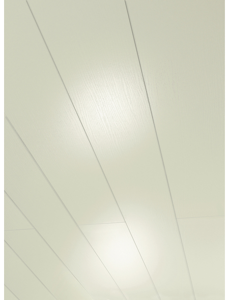 PARADOR Dekorpaneele »Rapido«, Eschefarben, Holz, Stärke: 12 mm