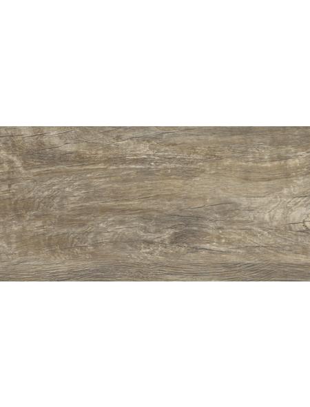 Living by HARO® Designboden »Hydrostar«, BxLxS: 235 x 1282 x 6,5 mm, braun