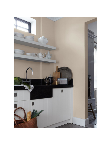 alpina dispersionsfarbe feine farben zauber der w ste. Black Bedroom Furniture Sets. Home Design Ideas