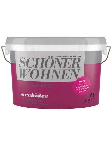 SCHÖNER WOHNEN Dispersionsfarbe »Trendfarbe«, Orchidee, matt