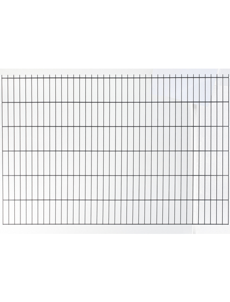 FLORAWORLD Doppelstabmatte, HxL: 163 x 251 cm, anthrazit