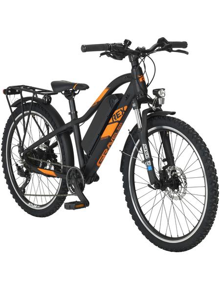 """REX E-Bike Mountainbike, 24 """", 7-Gang, 10.4 Ah"""
