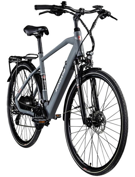 """ZÜNDAPP E-Bike Trekking »Z810«, 28"""", 24-Gang, 11.6 Ah"""