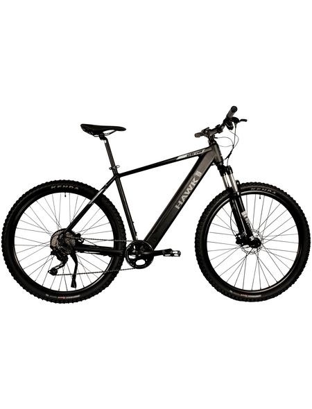 """HAWK E-Mountainbike »E-Mountain«, 29 """", 10-Gang, 13 Ah"""