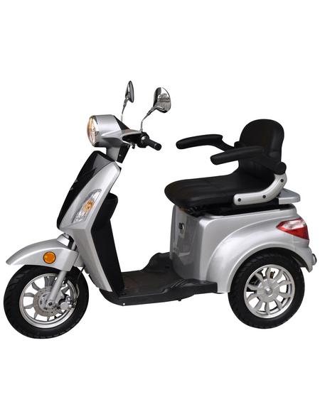 DIDI THURAU E-Trike »E-Trike«, 20 km/h (max.), 1000 W