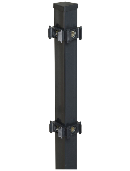FLORAWORLD Eckpfosten »Classic«, Stahl, BxHxL: 4 x 4 x 100 cm