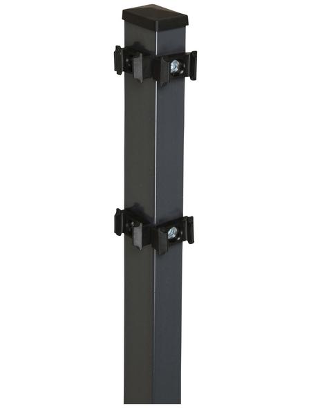 FLORAWORLD Eckpfosten »Comfort«, Stahl, BxHxL: 6 x 4 x 260 cm