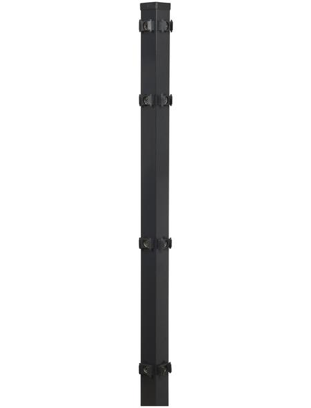FLORAWORLD Eckpfosten, Stahl, BxHxL: 6 x 6 x 220 cm