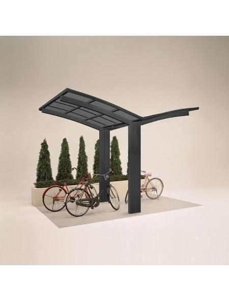 XIMAX Einzelcarport »Portoforte Mini«, Außenmaß BxT: 404 x 253,8 cm, schwarz