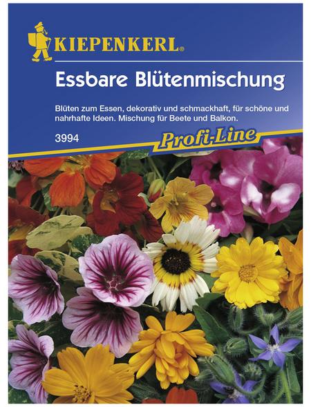 KIEPENKERL Essbare Blütenmischung, Samen, Blüte: mehrfarbig