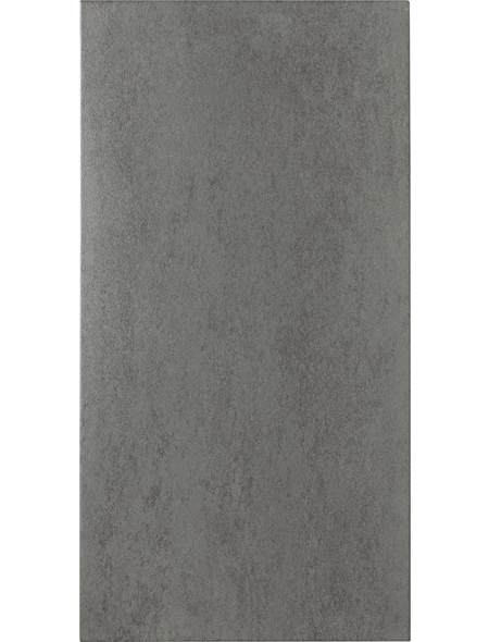 Feinsteinzeug »Bari«, BxL: 30 x 60 cm, grau