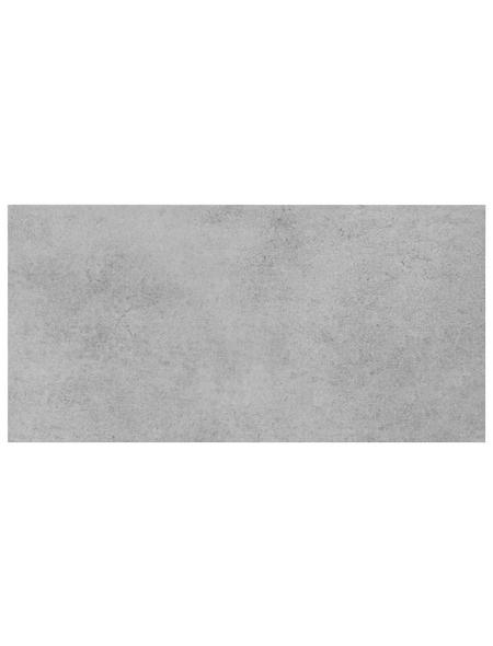 Feinsteinzeugfliese »Fog«, BxL: 29,8 x 59,8 cm, hellgrau